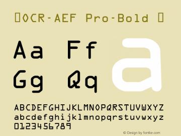 ☞OCR-AEF Pro-Bold