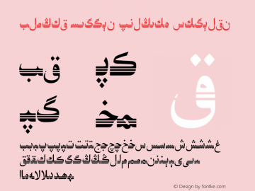 Alpida Uyghur Esliye2