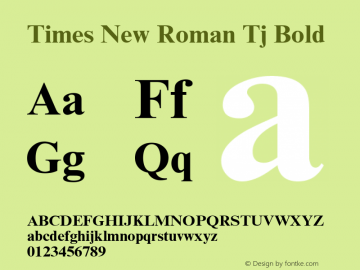 Times New Roman Tj
