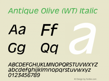 Antique Olive (WT)