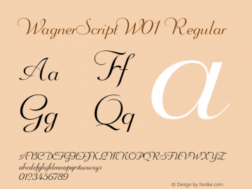 WagnerScriptW01