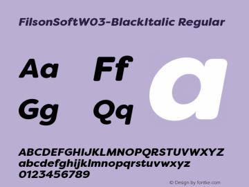 FilsonSoftW03-BlackItalic