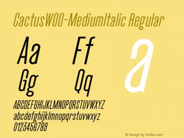 CactusW00-MediumItalic