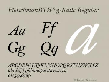 FleischmanBTW03-Italic