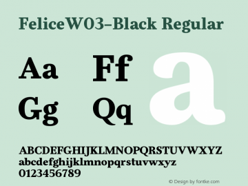 FeliceW03-Black