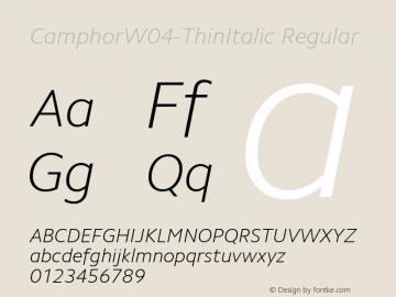 CamphorW04-ThinItalic