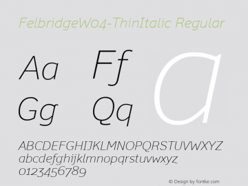 FelbridgeW04-ThinItalic