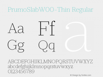 PrumoSlabW00-Thin