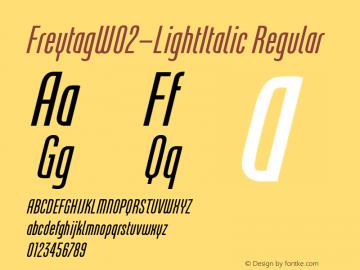 FreytagW02-LightItalic