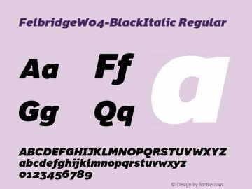 FelbridgeW04-BlackItalic