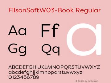 FilsonSoftW03-Book