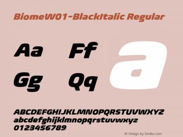 BiomeW01-BlackItalic