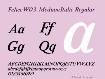 FeliceW03-MediumItalic