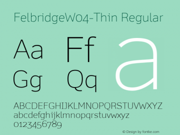 FelbridgeW04-Thin