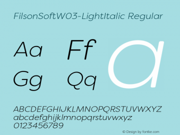 FilsonSoftW03-LightItalic