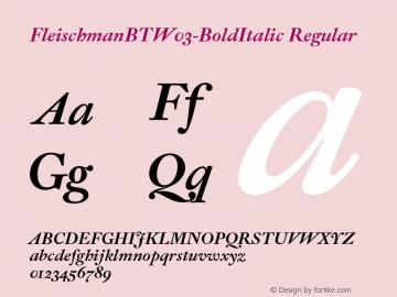 FleischmanBTW03-BoldItalic