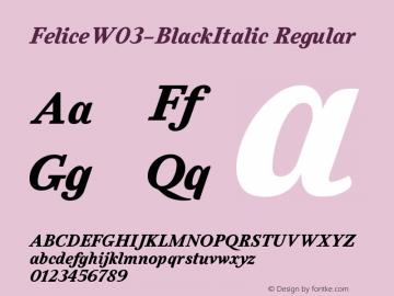 FeliceW03-BlackItalic