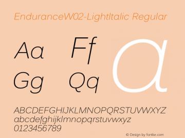 EnduranceW02-LightItalic