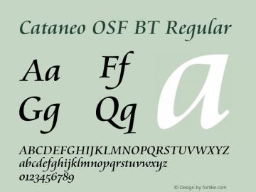 Cataneo OSF BT
