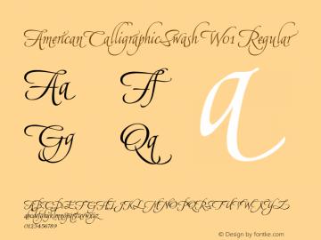 AmericanCalligraphicSwash W01