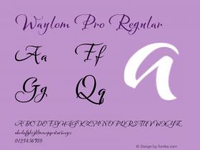 Waylom Pro