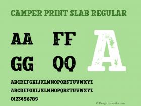 Camper Print Slab