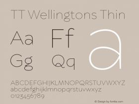 TT Wellingtons