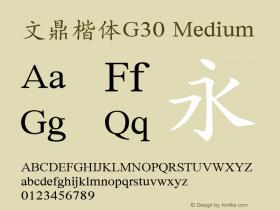 文鼎楷体G30