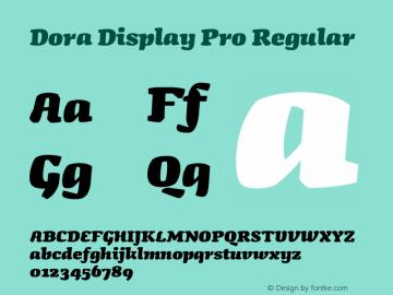 Dora Display Pro