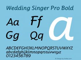 Wedding Singer Pro