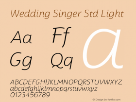 Wedding Singer Std