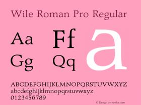 Wile Roman Pro