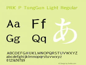 PRK P TungGun Light