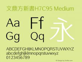 文鼎方新書H7C95