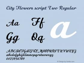 City Flowers script Two