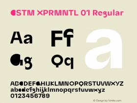CSTM XPRMNTL 01