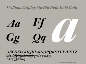 William Display Std Bld Italic