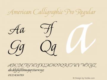 American Calligraphic Pro