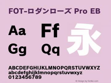 FOT-ロダンローズ Pro