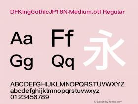 DFKingGothicJP16N-Medium.otf