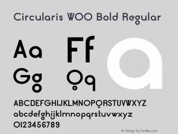Circularis W00 Bold