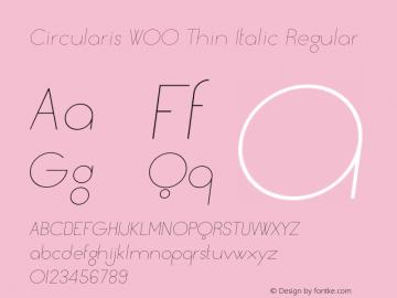 Circularis W00 Thin Italic