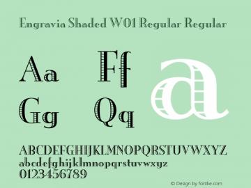 Engravia Shaded W01 Regular