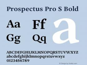 Prospectus Pro S