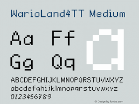 WarioLand4TT