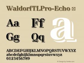 WaldorfTLPro-Echo