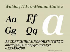 WaldorfTLPro-MediumItalic