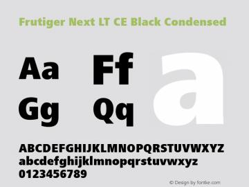 Frutiger Next LT CE