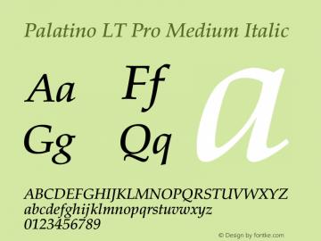 Palatino LT Pro