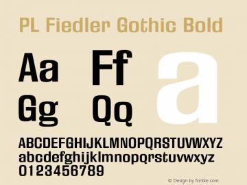 PL Fiedler Gothic
